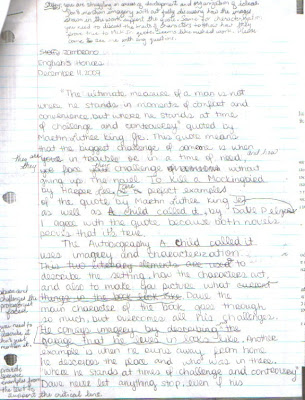 critical lens essay sample critical lens essay
