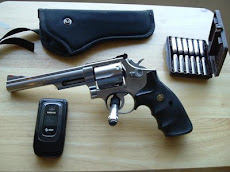 Smith & Wesson 66-3
