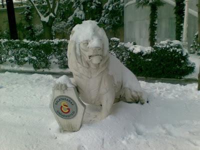 Kardan aslan