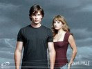 Tom Welling in Smallville Wallpaper 1