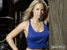 Laura Vandervoort in Smallville Wallpaper 4