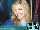 Sarah Chalke in Scrubs Wallpaper 1