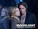 Alex O Loughlin in Moonlight Wallpaper 6
