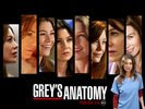 Ellen Pompeo in Greys Anatomy (TV Series) Wallpaper 1