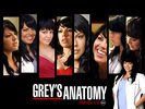 Sara Ramirez in Greys Anatomy Wallpaper 4