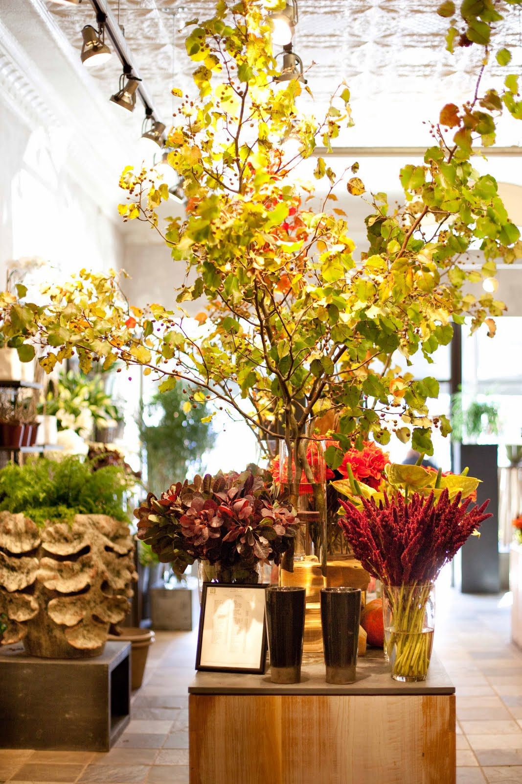 Winston Flowers: 15% Off Deal for Winston dveneu.ga from widest array of top products which are trending now. Make sure to reduce your cost with this discount code & promo code when check out at Winston Flowers.
