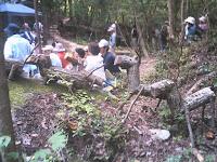 間伐材でできた森の動物