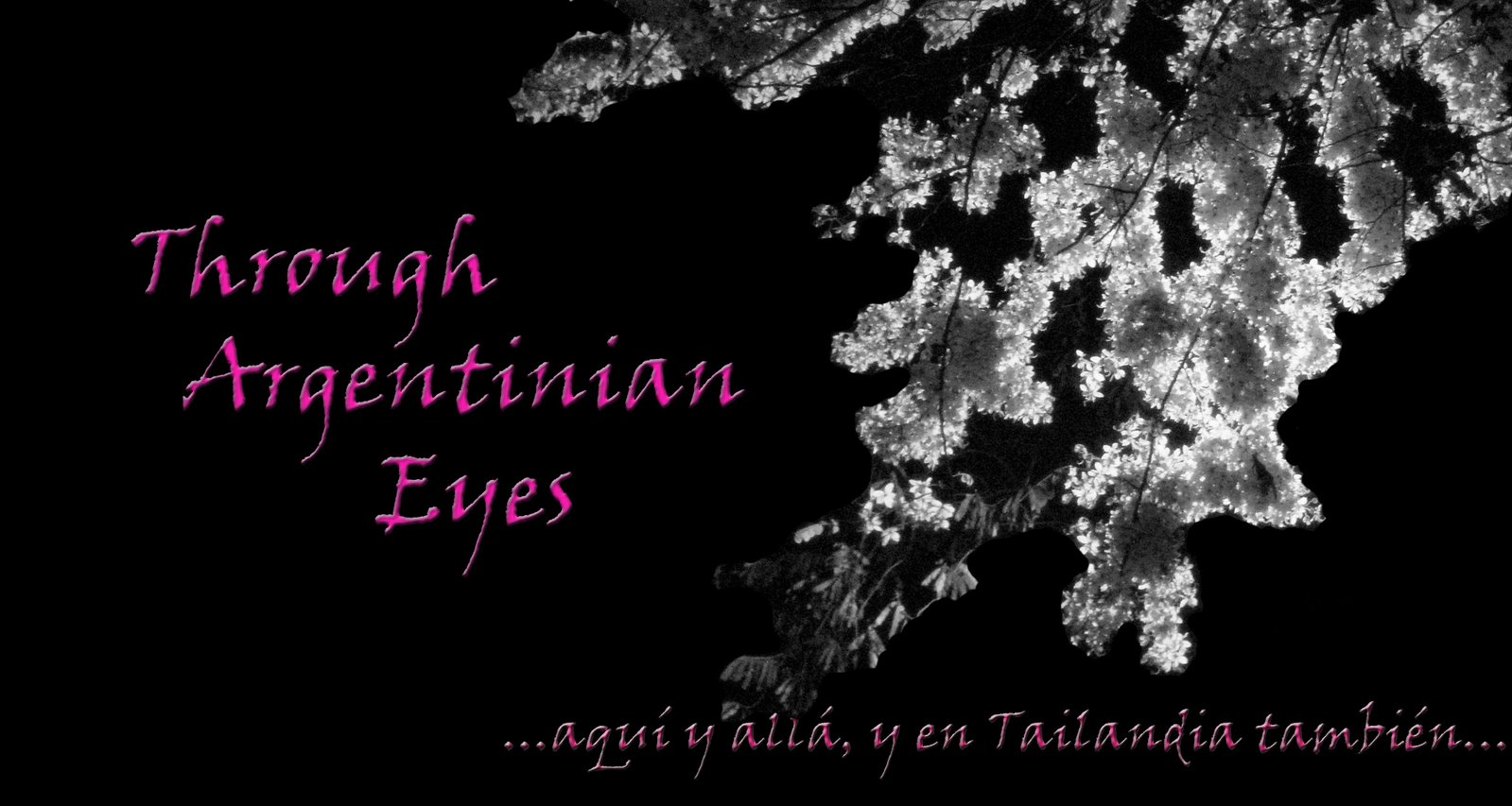Through Argentinian Eyes