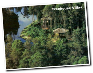 Lake Buena Vista Resort Community Treehouse Villas