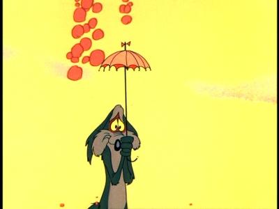Coyote Umbrella