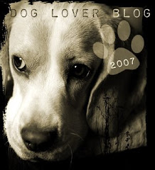 DOG LOVER BLOG 2007