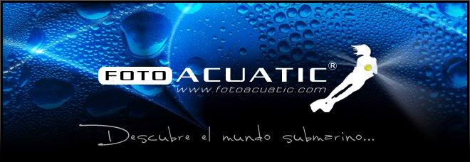 Blog Foto Acuatic