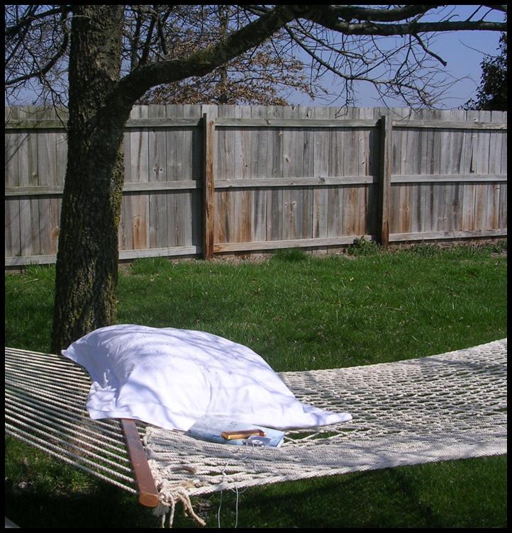 [hammock.jpg]