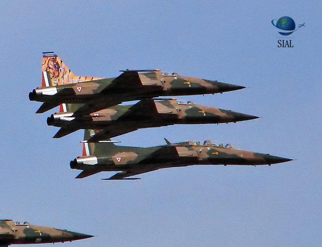 20 de Noviembre último desfile oficial de los F-5...??? ( en tiempo real). Dia_fam6