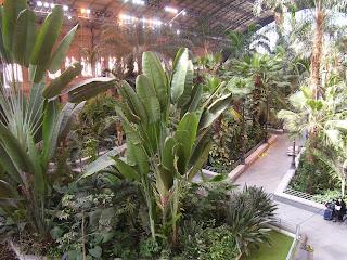Mi rincon estaci n de atocha y jardines tropicales - Jardin tropical atocha ...
