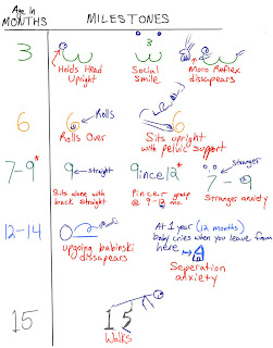 Mike's High Yield Blog for the USMLE Step 1: Developmental ...