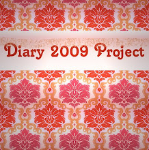 2009 Diary Project