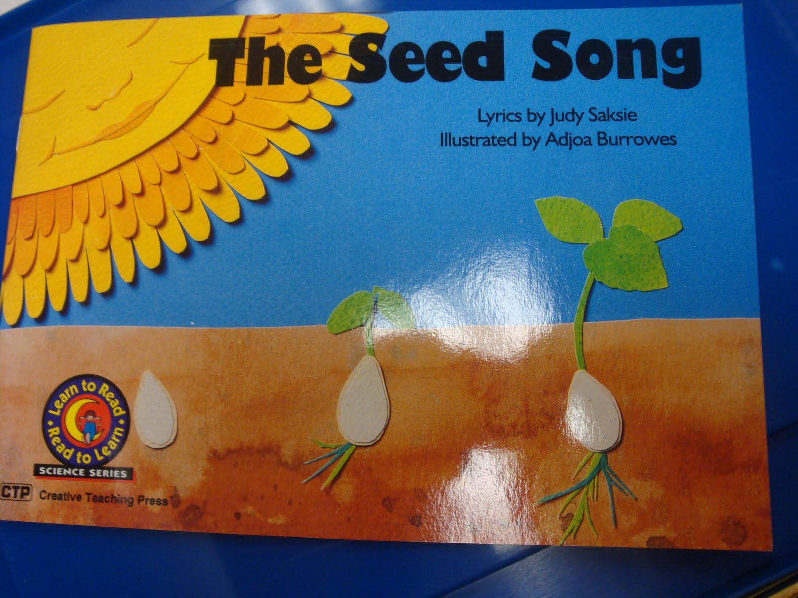 Prek Preschool Ideas From Noey Planting Seeds