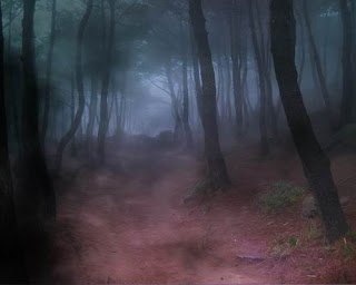 Тропинка в туманном лесу.