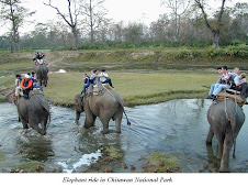 Elephant ride in Chitwan