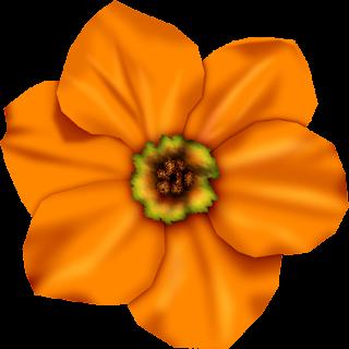 Recursos Infantiles Flores Naranjas Png
