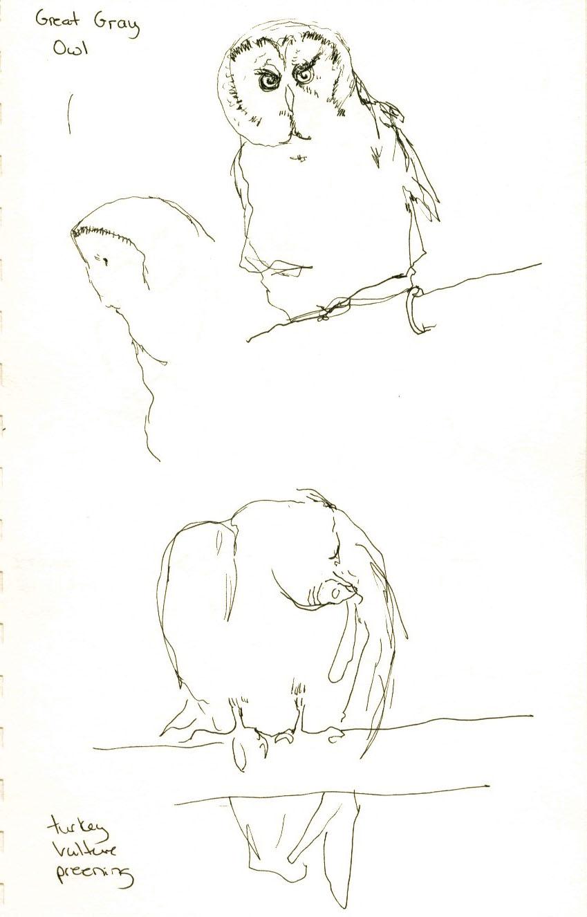 Deb Dugan: Drawing Lab 4 Part I @ VINS (Vermont Institute