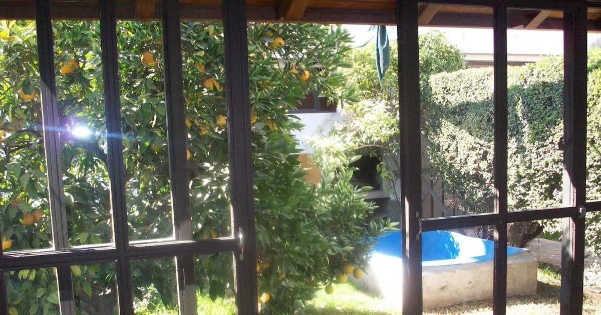 Alquiler de casa en san mart n patio de invierno for Alquiler de casa en pino grande sevilla