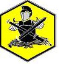 Địa Phương Quân Logo