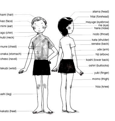 nihongo den 語い parts of the body