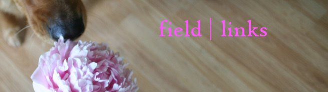 field | links