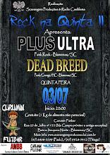 03/07/08 - Rock na Quinta II