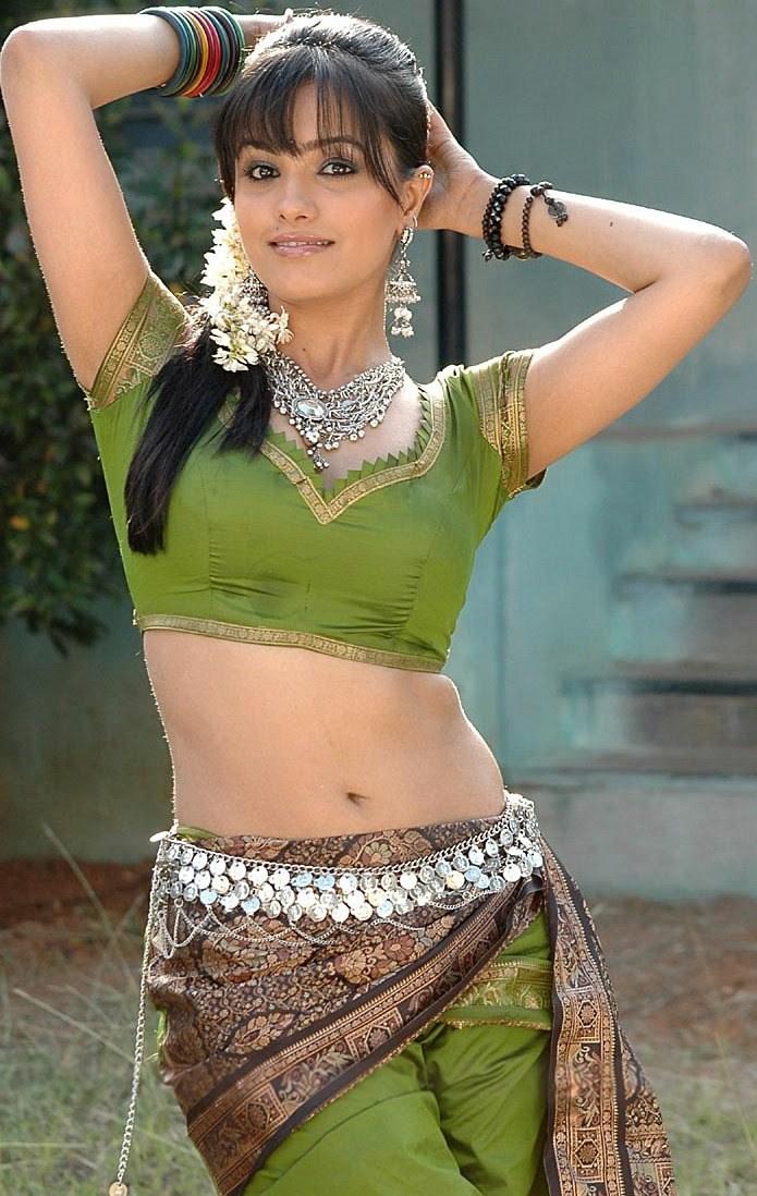 Telugu Cinema News: Raveena Tandon Hot Celebrity Photos