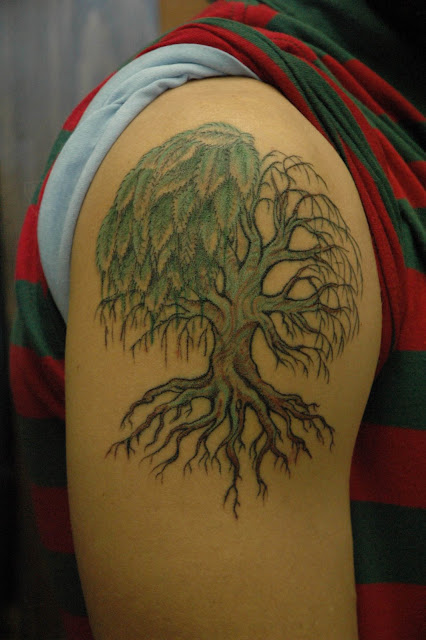 Tattoos are beautiful a willow tree grows in winter for Willow tree tattoo