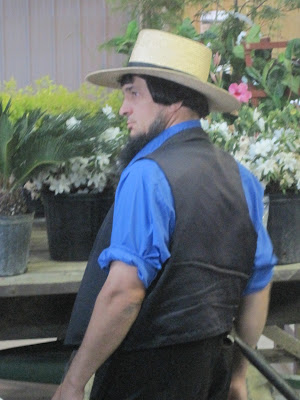Gone Walkabout Amish Plant Auction