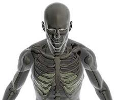 Conociendo  las  Enfermedades Respiratorias
