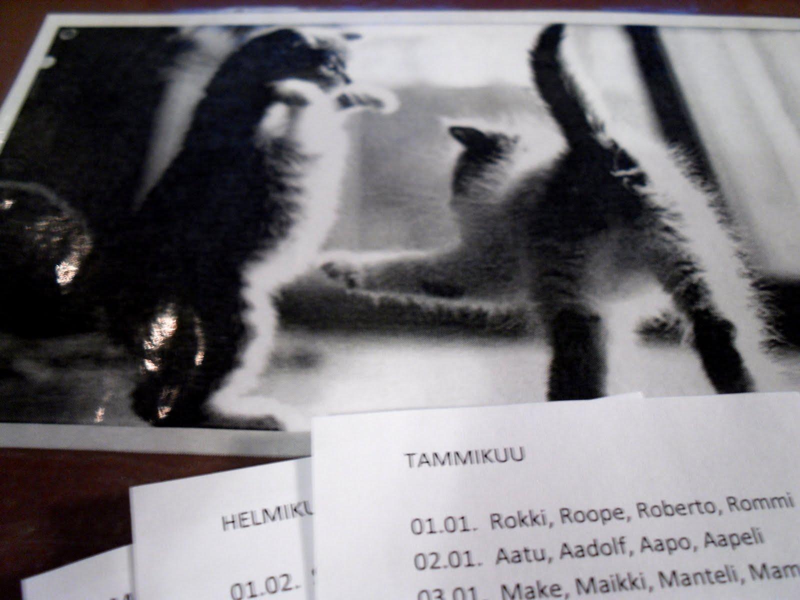 Kissojen Nimipäiväkalenteri
