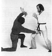 Secret ninja move - Monkey Steals the Peach