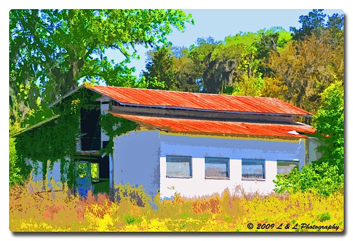Ocala, Central Florida & Beyond: Old horse barn