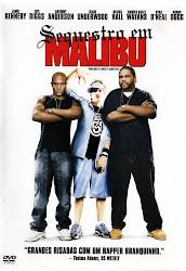 Baixar Sequestro em Malibu Dublado Grátis