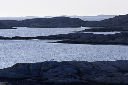 [Marstrand151.jpg]