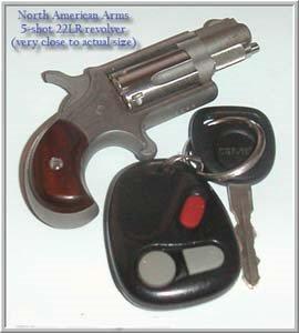 22+revolver