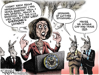 Image result for nancy pelosi cartoons