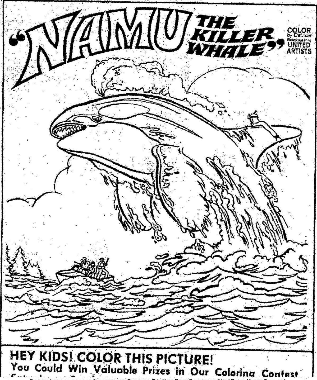 KILLER WHALE COLORING PICTURES « Free Coloring Pages