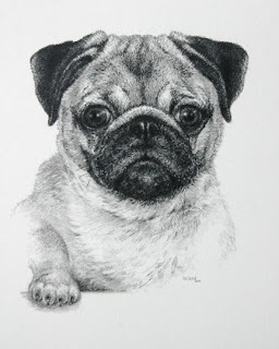 Pug by Lori Levin