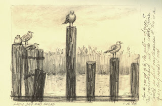 Gulls by Lori Levin