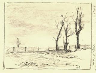 Harris Field by Levin