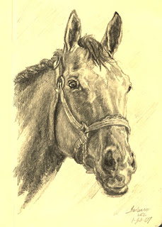 Barbaro by Levin