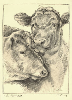 Cows by Lori Levin