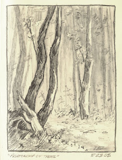 tree drawing by Lori Levin