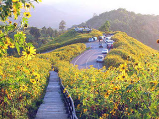 http://bp1.blogger.com/_akGQwnhykTw/RsXldrMQc0I/AAAAAAAAAKM/PbcHMxwRyVk/s320/Chiang+Mai5.jpg